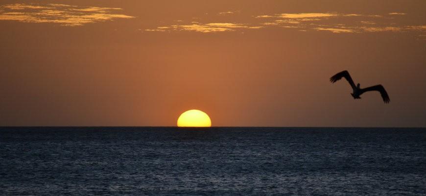 Sunset Playa Negra Costa Rica